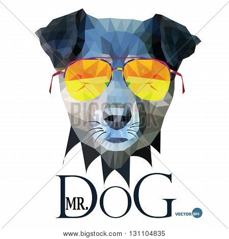 Dog Hipster man Mr. Dog Terrier in glasses fashion look animal illustration portrait in polygonal style isolated on white background. Cartoon and book hero design for print on things and fabrics