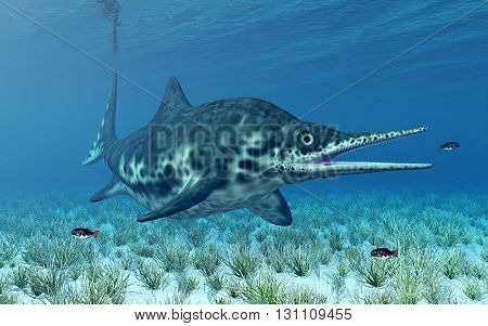 Computer generated 3D illustration with the prehistoric ichthyosaur Shonisaurus