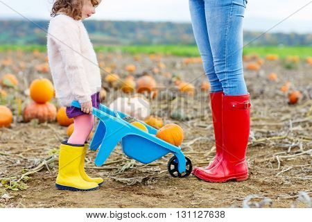 Legs of young woman and her little kid girl daugher in rainboots. Woman in red gum boots, child in yellow shoes. On pumpkin field, outdoors.