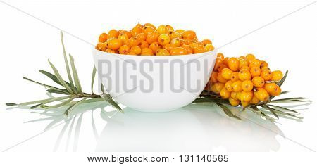 A bowl of fresh berries and buckthorn bunch isolated on white background.