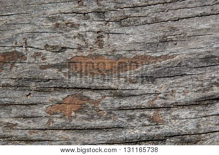 Wooden Texture On The Hovel. Wood Textured Background. Old Wood Table