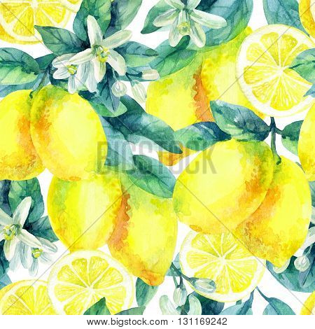 Watercolor lemon fruit branch with leaves seamless pattern on white background. Lemon citrus tree. Lemon branch and slices. Lemon branch with leaves. Hand painted illustration