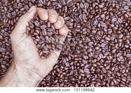Overhead view of hand holding coffee beans while placed against a pile more