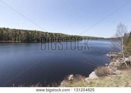 Algonquin Park, Ontario - Canada
