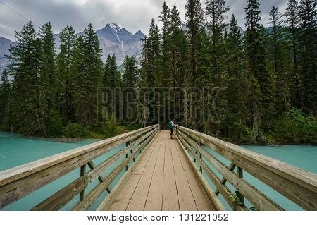 Teenage Girl on Foot Bridge along the Berg Lake Trail, British Columbia