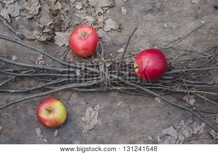 Red apples and thin brushwood on an autumn wooden background faded colors