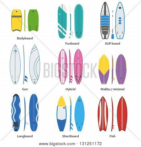 Various Surfboards Vector Set
