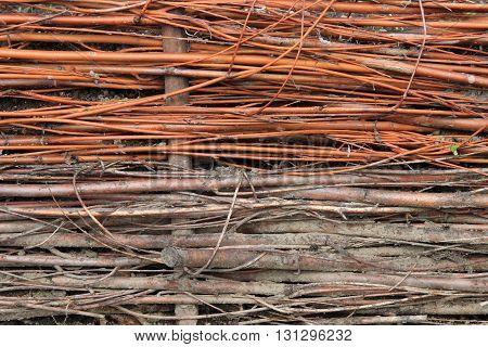 Willow Wicker Texture