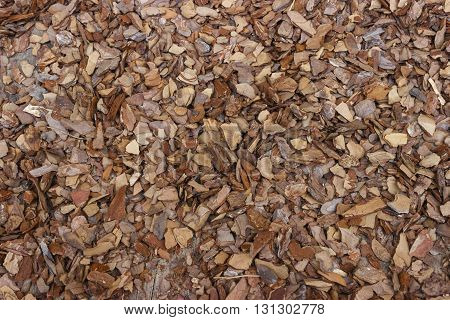 Background. The crushed chips of pine bark mulch ground