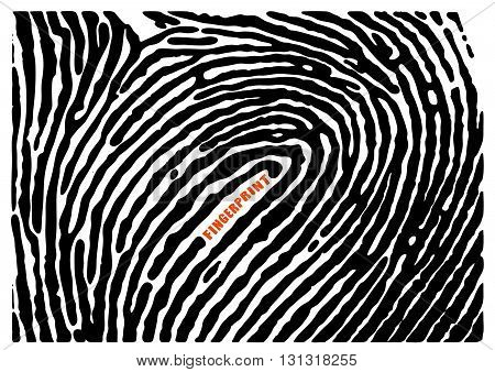 Fingerprint vault. Black fingerprint. Fingerprint shape. Fingerprint secure. Fingerprint identification. ID fingerprint. Push fingerprint for unlock. Fingerprint pressure. Vector Fingerprint.