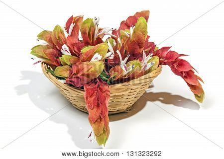Display Of Pink Prawn Flowers In Woven Wicker Basket