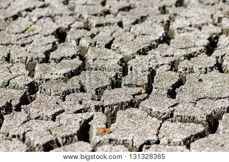 Cracked earth after drought dry weather global warming