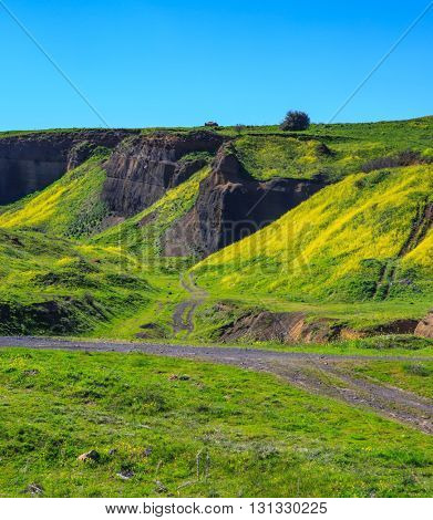 Spring flowering under the warm sun and wind. Legendary Golan Heights