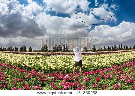 Stunned tourist in white shirt and bandana greets the rising sun. Flower kibbutz near Gaza Strip. Spring flowering buttercups