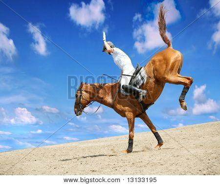 Tema de caballo: las carreras de caballos, jinetes, velocidad.