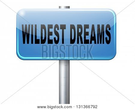 Wildest dreams make dreams come true realize your ambition
