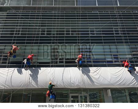 Urban alpinist climbers cleaning the windows of an office building