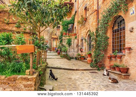 Beautiful alley in old town Tuscany, Italy