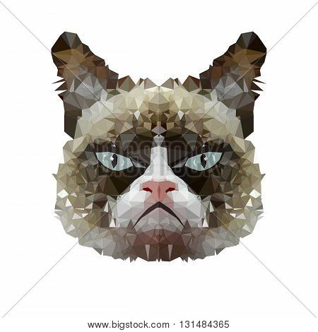 Digital low poly cat with blue eyes and gray color sad face