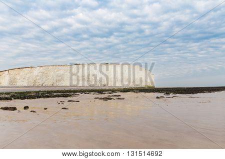 Popular white cliff Birling Gap coast West Sussex England United Kingdom poster