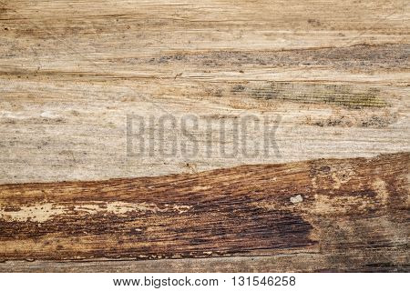 Thai banana paper background, Banana Plank Paper is created by piecing large banana leaves together and backing them with cheesecloth.