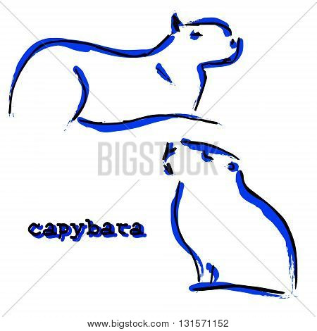 The symbol of a large rodent. Sketch of a water rat on a white background. Lines in the form of an animal. Vector poster