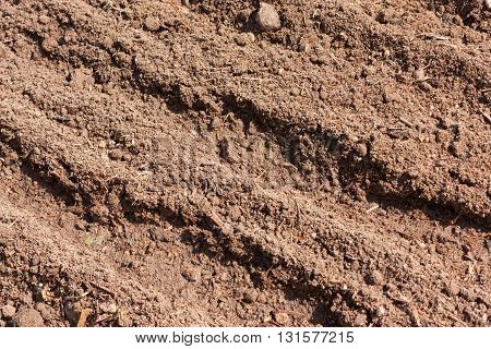 Brown Dry Plowed Soil Surface With Grooves