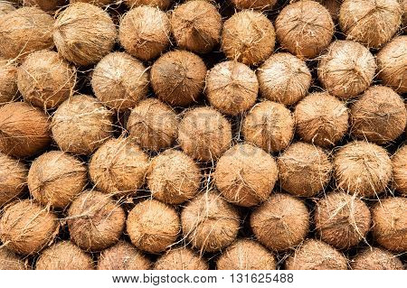DETAIL OF COCONUTS HEAP AT MARKET, INDIA