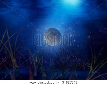 Underwater Skies - a piece of a dreamworld for your PC or fantasy artwork