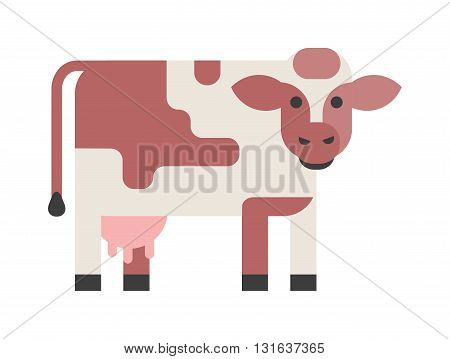 Brown cow isolated on white background and farm cow isolated domestic mammal. Cow isolated vector animal and cow isolated standing, farm agriculture, flat face brown head funny cartoon animal.