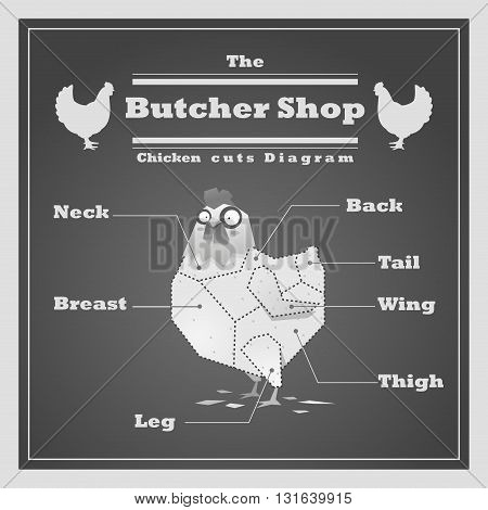 Chicken cuts diagram Butcher shop background, vector, illustration