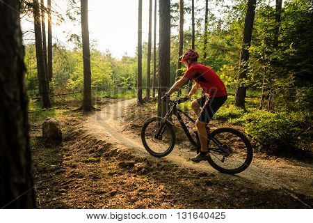 Mountain biker riding on bike in spring inspirational mountains landscape. Man cycling MTB on enduro trail path. Sport fitness motivation and inspiration. Rider mountain biking in fall woods. poster