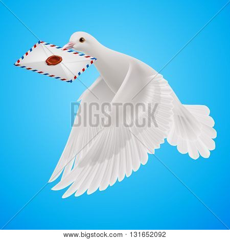 Carrier fly with mail in blue sky