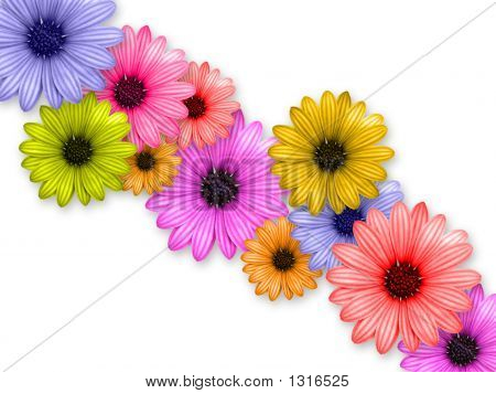 Flower'S Chain