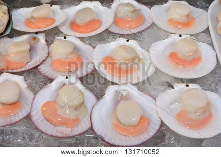 Fresh opened scallop, Fresh scallops in the wings for cooking. From a series of Food Korean cuisine