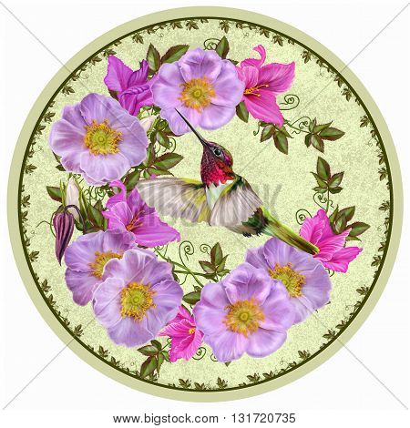 branch of a flowering wild rose and hummingbird little bird in a circle. Painting. Round form.