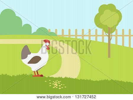 Chicken hen farm habitat flat cartoon vector farm animals birds