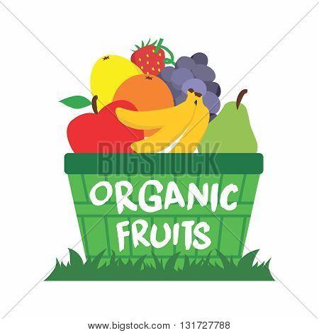 Vector Cartoon Organic Fruit Basket on Grass Illustration isolated on white background