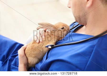 Skillful male vet is trying to cure the ill rabbit. He is holding pet and stroking it with sympathy