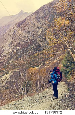 Female trekker on path through birch forest. Valley running along Annapurna circuit trek in Nepal.
