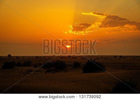 Sun ball setting down over Thar desert, Rajasthan, India