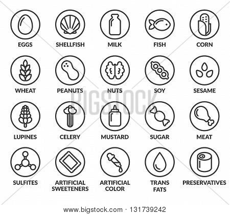 Set of allergy ingredient warning labels. Common allergens icons. Gluten and sulfite sensitivity celery and mustard artificial sweeteners and preservatives and more.