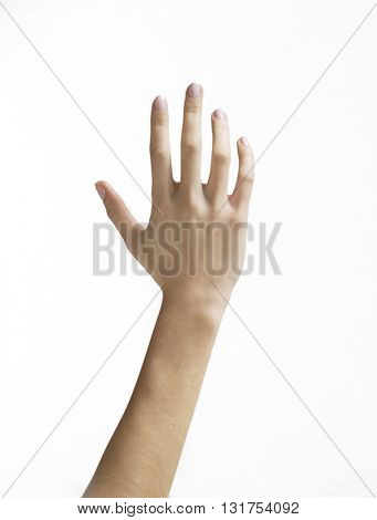OUTER SIDE OF OPEN HAND , ISOLATED ON WHITE BACKGROUND, poster