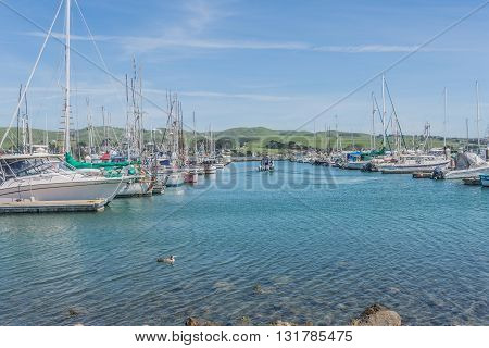 Bodega Bay, Ca, Eua - March 23 2016:  Boat And Yatch On Bodega Bay, California, City Where Filmed Th