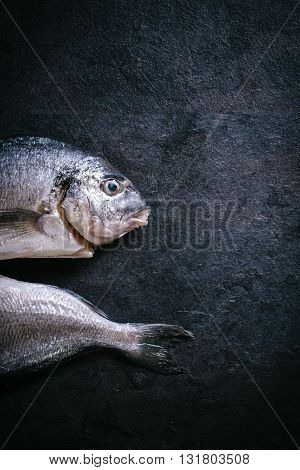 Photos of gilthead fish on rustic background