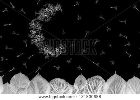 Moon And Stars From Lilac Flowers