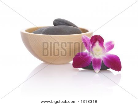 Pebbles And Orchid