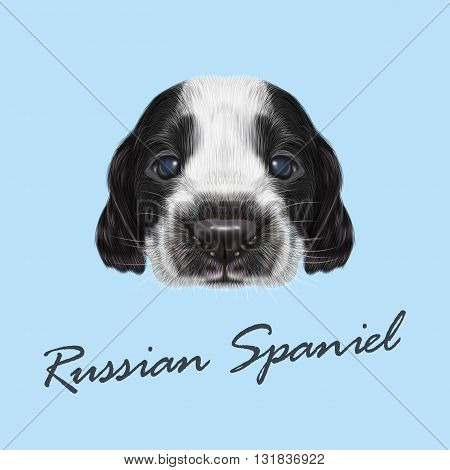 Vector Illustrated portrait of Russian Spaniel Puppy. Cute bicolor face of domestic puppy on blue background.