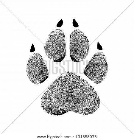 Real animal paw prints