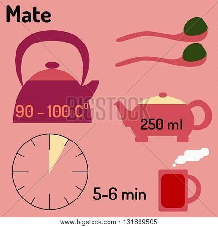Mate. Tea infographic. How to make tea. Vector illustration